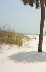 Staycations grow in popularity-Tampa, Florida