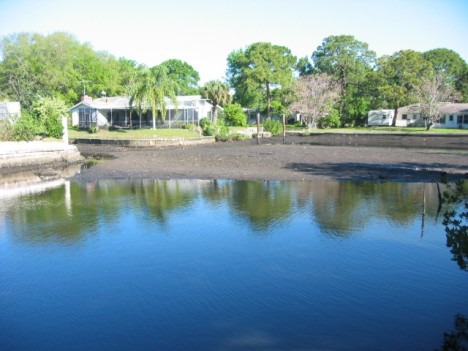 Canal Dredging Update-South Tampa Waterfront Community